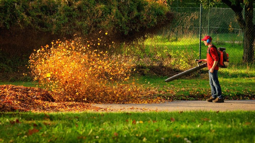 Why Are Leaf Blowers So Loud