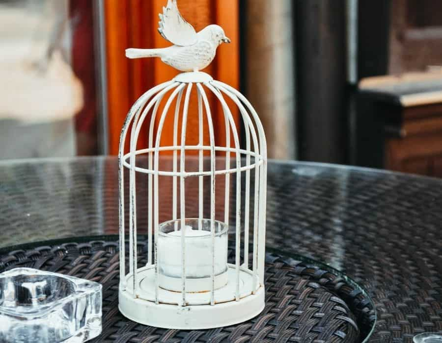 Bird Cage (DIY)
